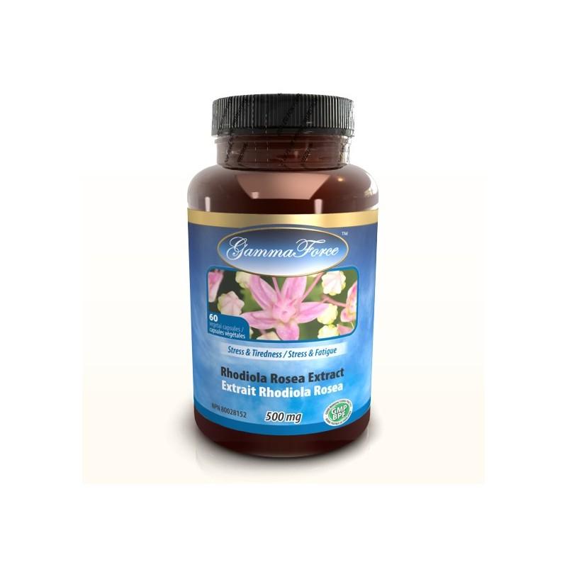 Rhodiola Rosea 3% salidro. 500mg 60 capsules