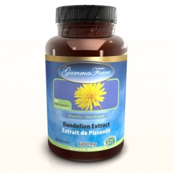 Dandelion Root Extract 480MG 60 Capsules